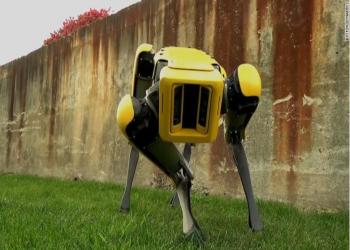 सङ्ख्या बढेपनि आधुनिक 'रोबोट कुकुर' बेरोजगार रहने चिन्ता !