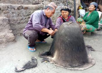 भैंसीको छालाबाट डोको बनाउँदै रोल्पाका एक दम्पती । तस्बिरः उमा केसी, रासस